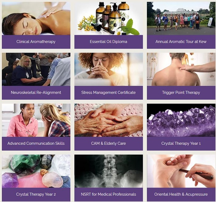 Natural Therapeutics Courses