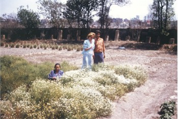 Jolanta Basnyet 'supervising' the harvest of Nepalese Chamomile in the field of the processing unit in Kathmandu, Nepal