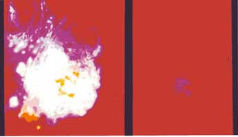 Figure 1 Kirlian photograph of Muesli Energy (left) and Cornflake Energy (right)