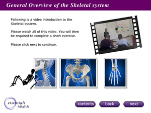 New virtual Classroom for Anatomy and Physiology Launched