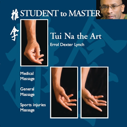 New DVD:  Tui Na Student to Master