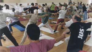 Dru Yoga harmonizes the energy flows on a physical and emotional level to create complete health and vitality.(Photograph courtesy of Elna Obreen)