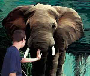 A blind man trying to figure out the elephant by holding its trunk
