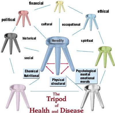 Joseph Goodman's Tripod of Health and Disease