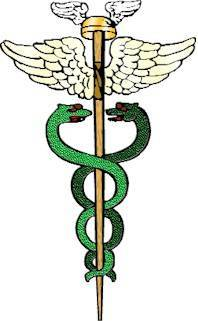 Figure 2 The Caduceus