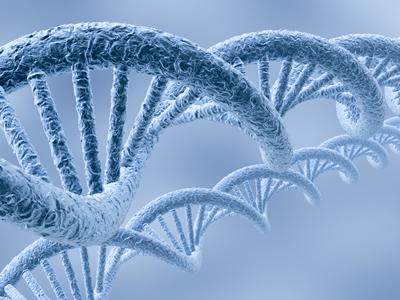 Molecular DNA