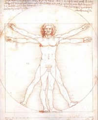 Leonardo Da Vinci studied of the proportions of the male human body as described in a treatise by the Ancient Roman architect Vitruvius.