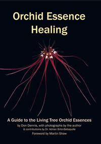 [Image: Orchid Essence Healing: A Guide to the Living Tree Orchid Essences]