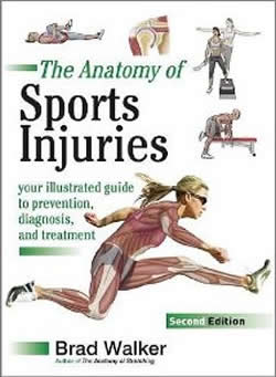 Anatomy of Sports Injuries 2nd Edition Cover