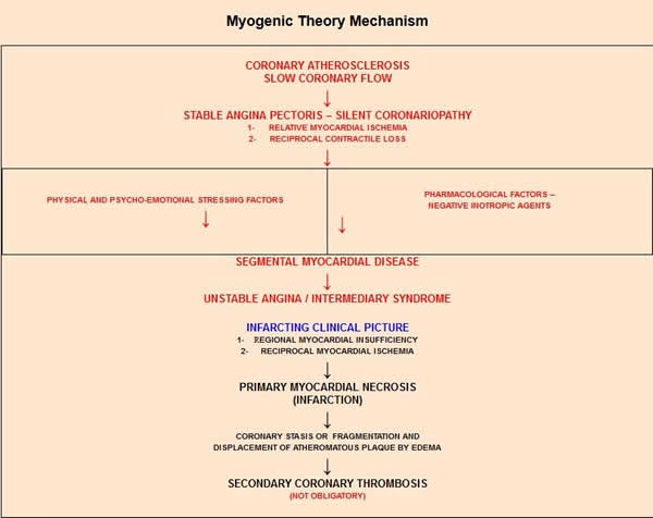 Myogenic Theory Mechanism