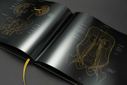Luxury Anatomy book: Anatomy in Black
