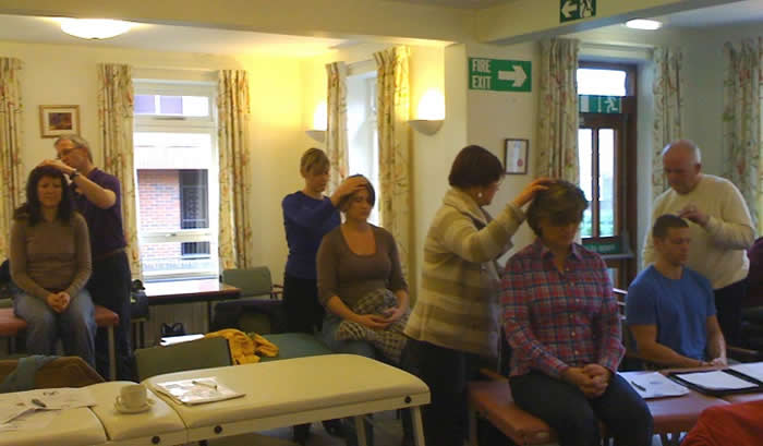 Turning Point Training Postgraduate Courses: Craniosacral Therapy, Homotoxicology