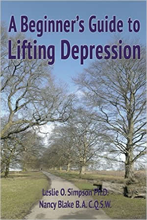 A Beginner's Guide to Lifting Depression (Beginner's Guides)