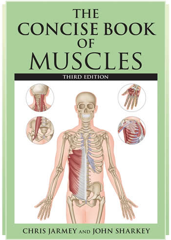 The Concise Book of Muscles Third Edition