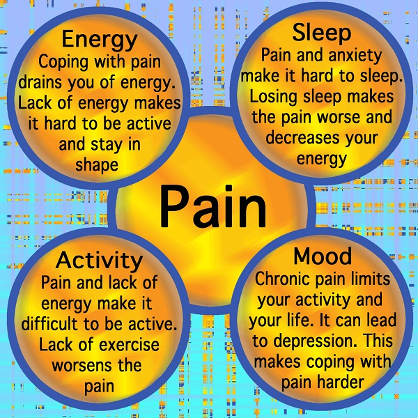 Pain Cycle 231