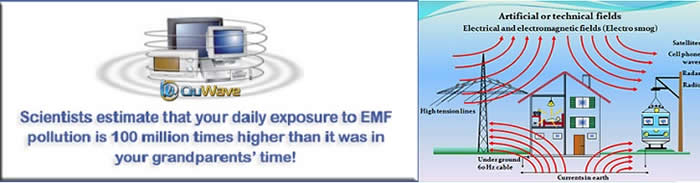 EMF Pollution Healing With Scalar Wave Technology from QuWave