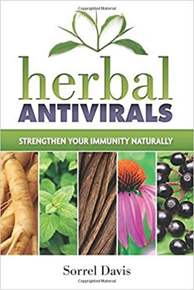 Herbal Antivirals - Strengthen Your Immunity Naturally