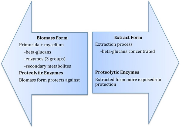 Diagram 2: Biomass and Extract form