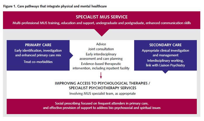 Figure 1 - Care Pathways that Integrate Physical and Mental Healthcare