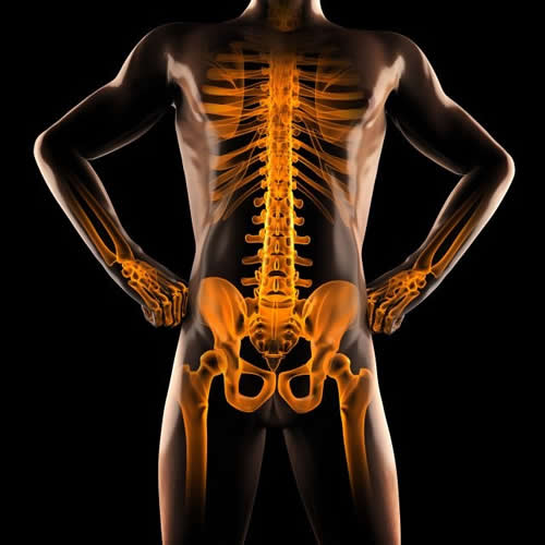Weightlifting Injury Prevention 5 Lumbar Spine