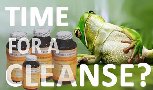 Robert Gray - A Cleanse to Fit the Modern Lifestyle!