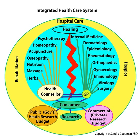 Integrated Health Care System Schism 2018