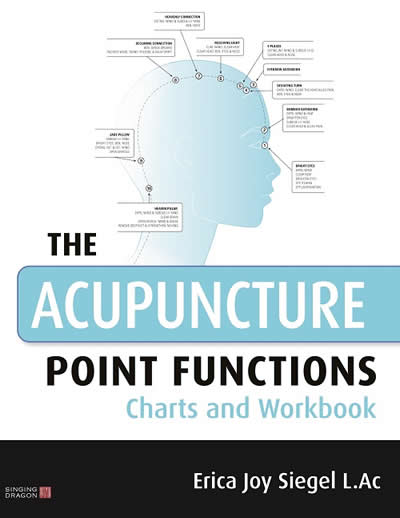 The Acupuncture Point Functions Charts and Workbook Paperback