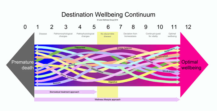 Destination Wellbeing Continuum (Arrows) Version 0 - 12