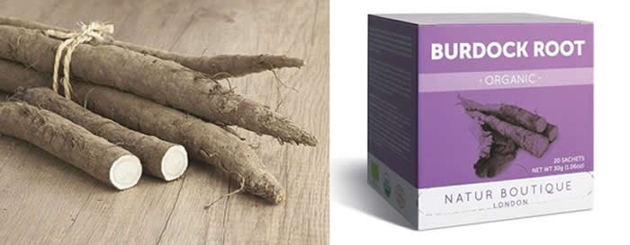 Burdock Root + Burdock Root Tea