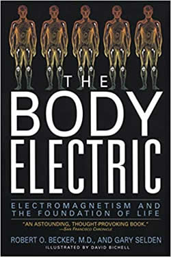 Cover The Body Electric Amazon