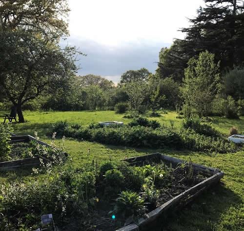 The apothecary garden in spring