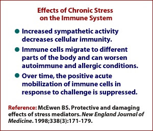 Effects of Chronic Stress on the Immune System