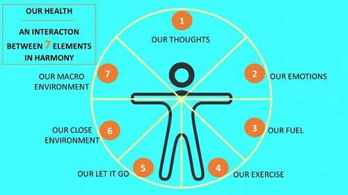 Our Health An Interaction between 7 Elements in Harmony