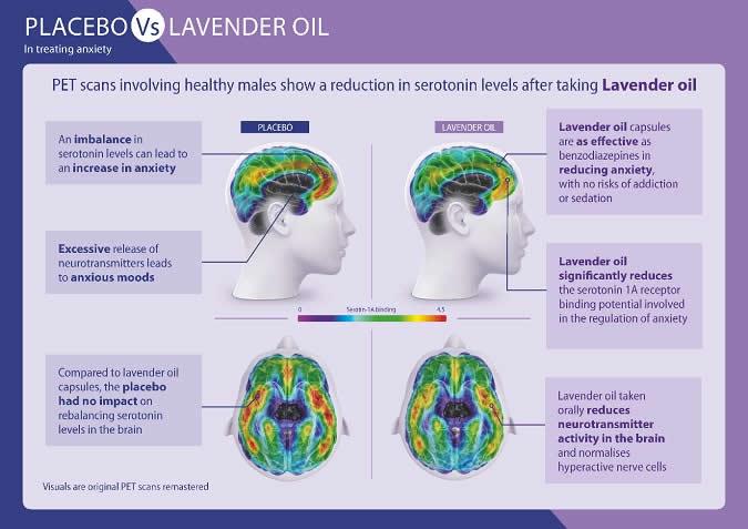 Placebo vs Lavender Oil