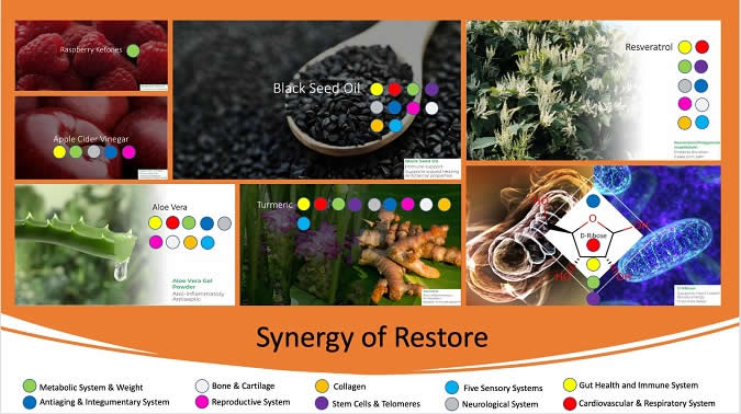 Synergy of Restore