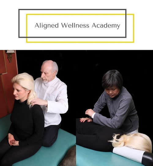 AWA Logo + Alexander + Wei Wu Treating