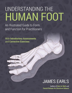 Understanding the Human Foot – An Illustrated Guide to Form and Function for Practitioners